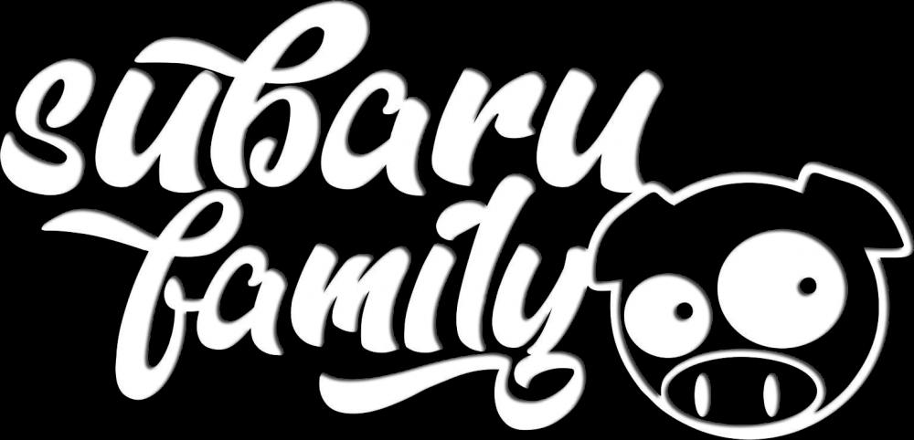 Subaru Family LDZ