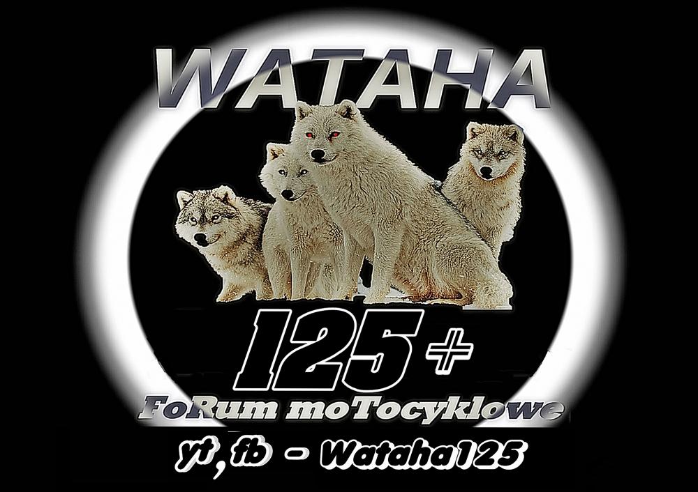 Wataha125+